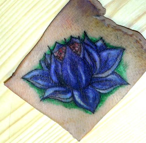 Tattoo on pig skin 2 by grazzyemo on deviantart for Pig skin tattoo