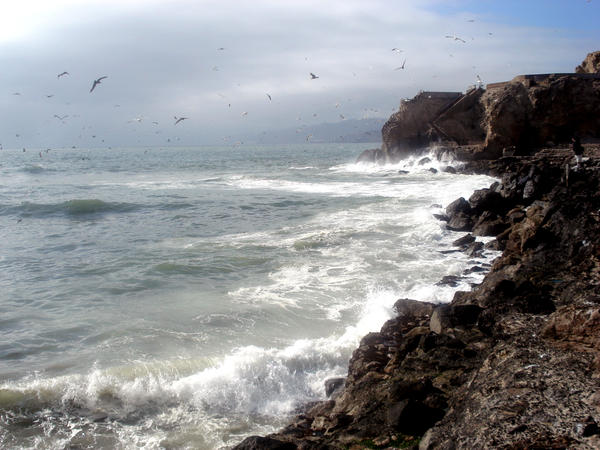 Ocean Beach1 by LadyDragonStock