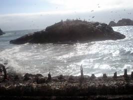 Ocean beach 5 by LadyDragonStock