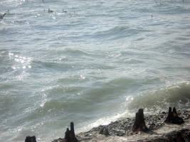 Ocean beach6 by LadyDragonStock