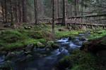 Eco-trail Beli Iskar