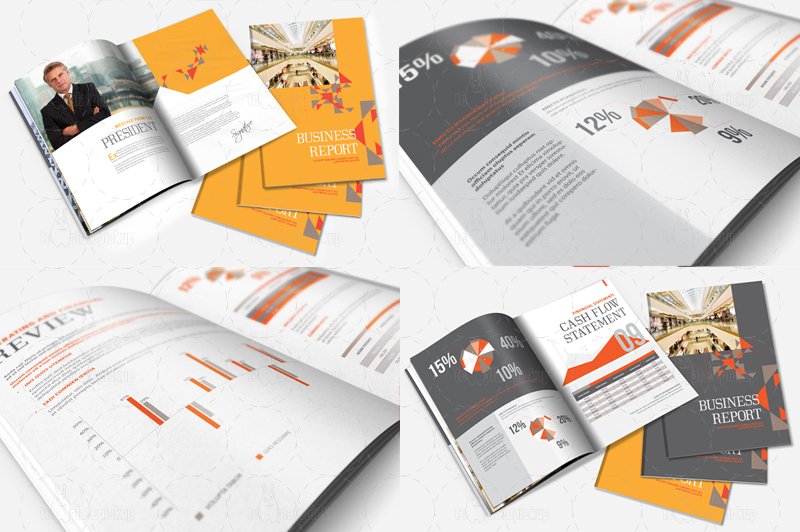 InDesign Annual Report Brochure Template By Templatepickup On - Indesign brochure template