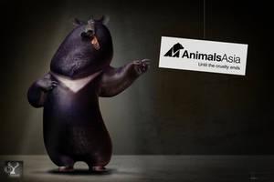 Asphalt Animal Asia by JBVendamme