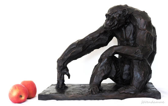 Sitting Chimp