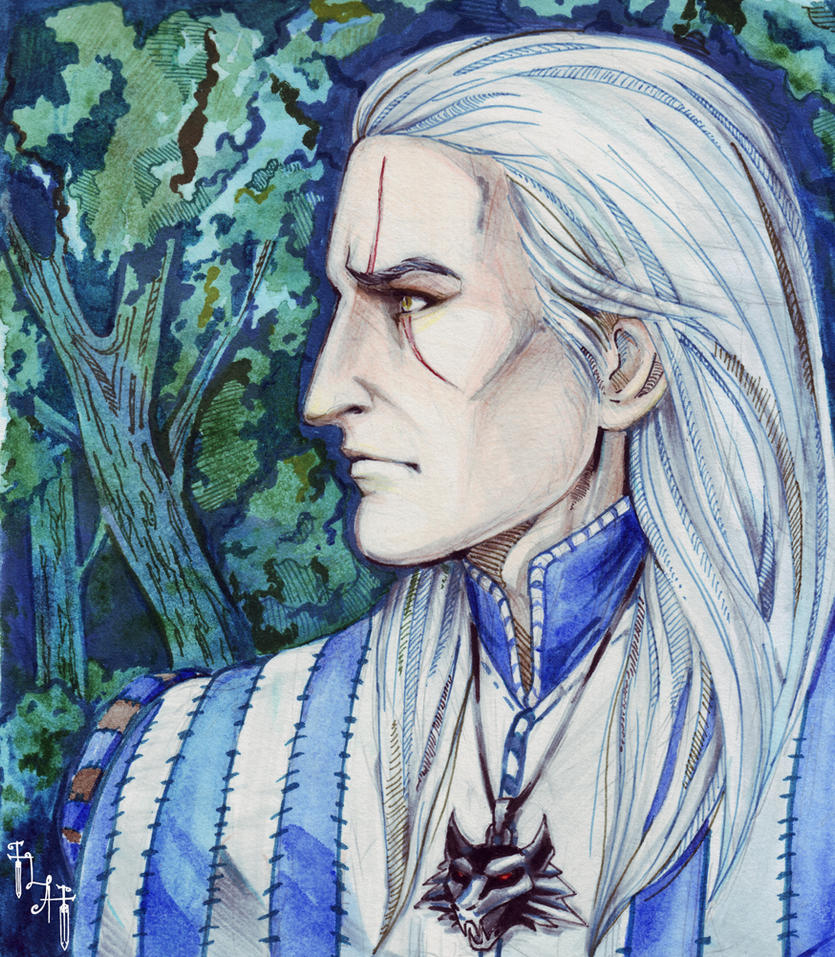 Witcher by Northern-god