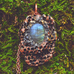 Real Wasp Nest and Labradorite Necklace