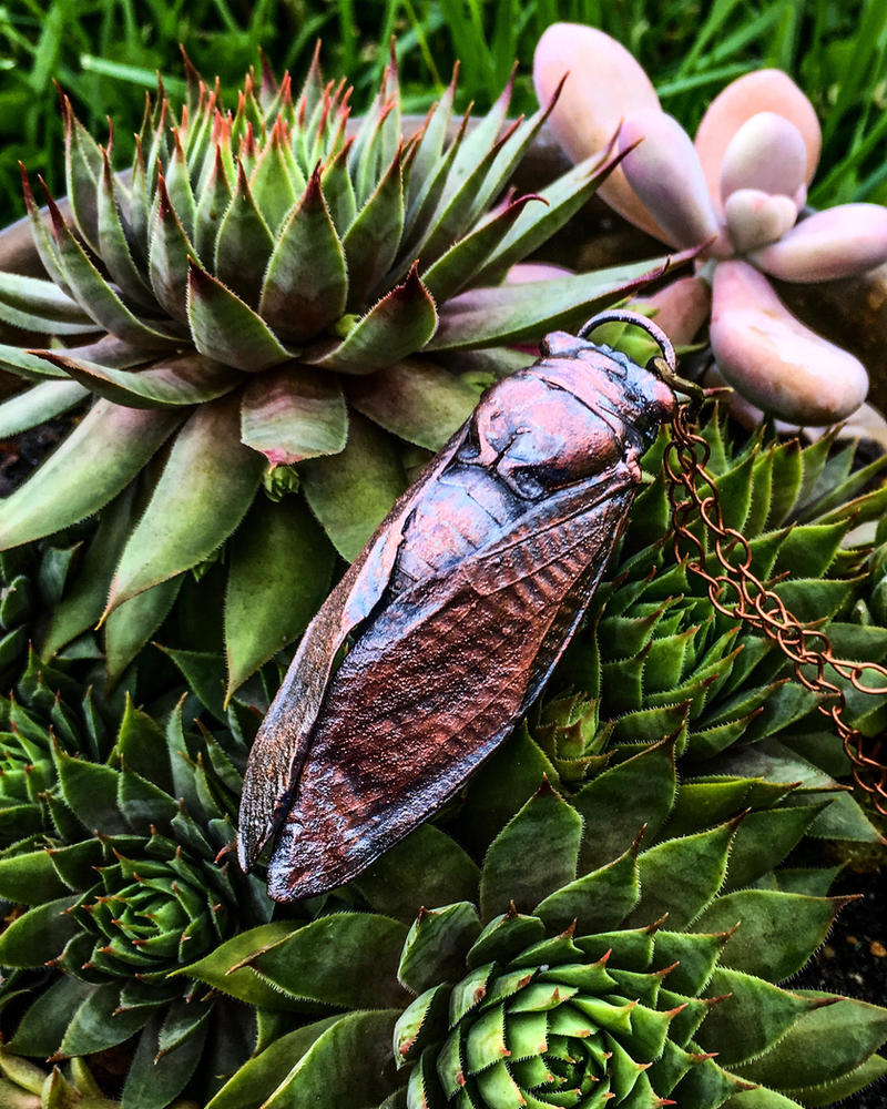 Copper Electroformed Real Cicada Pendant by merrypranxter