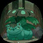 froggy bois