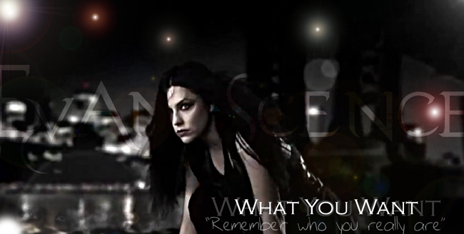 Evanescence What You Want by WayOath