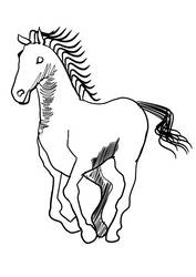 horse made with inkscape by hul78