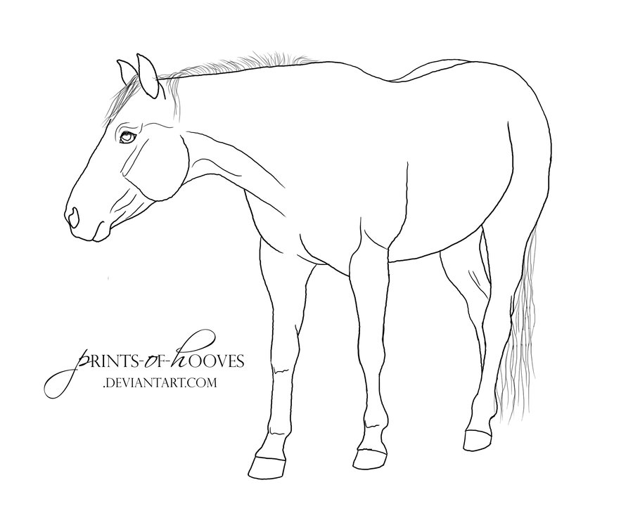 Tail of quarter coloring page pages sketch coloring page for Quarter horse coloring pages