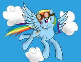 Bronycon S2012 P4: Rainbow Dash by Pustulioooooo