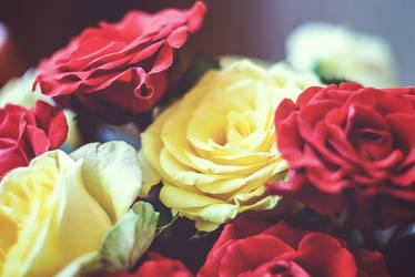 Random flower 2 by Aliros