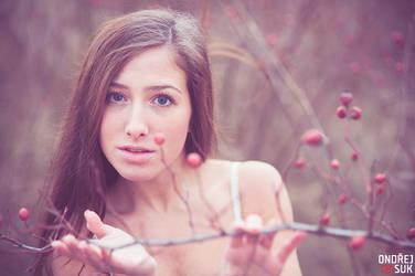 Fairy by DArkLOrd-Nikon