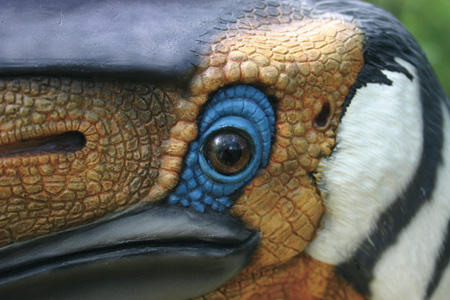 Quetzalcoatlus sp. by Fossilsmith