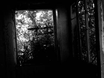 Abandoned House part 2 by KrolikPudding