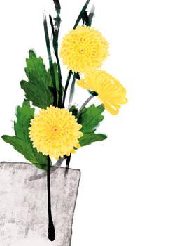 Floral fascination-Chrysanthem