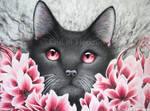 Inside Depression (red flower cat)