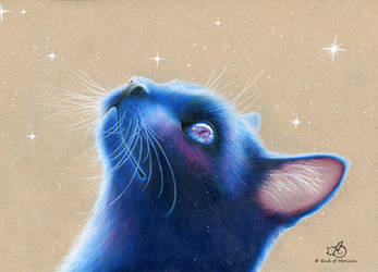 Blue Space Cat by End-of-Horizon