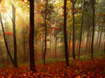 Premade Autumn BG