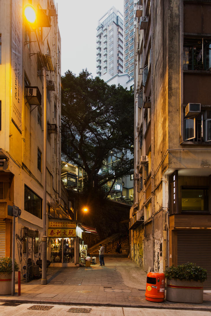 Street Scene Hong Kong by drifterManifesto