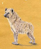 hyena by littlelionpaw