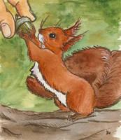 squirrel by littlelionpaw