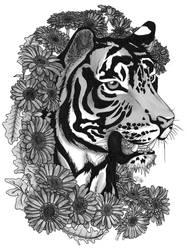 Tigerbera
