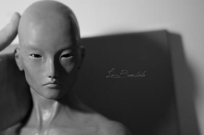 Work in progress, Murakami's head