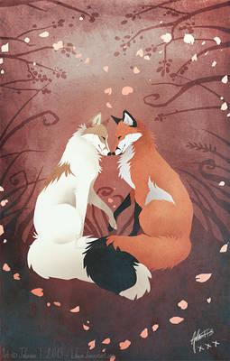 Valentine's Foxes