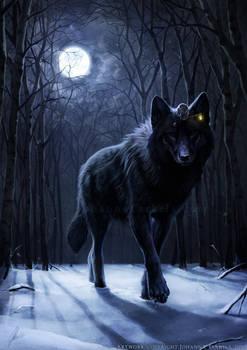 Encounter in the Night