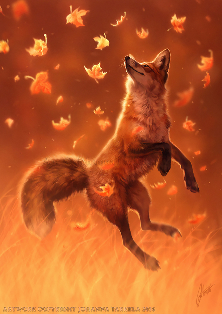 Orange Wolf Drawing Jump Into Fall ...