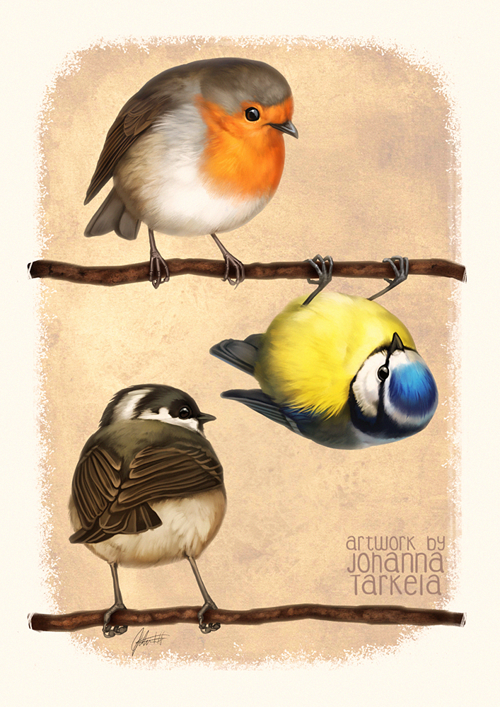 Three Little Birbs by Lhuin