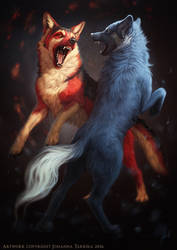 The duel of fire and ice