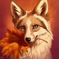 Autumn Johis