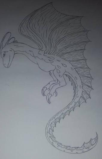 Random Hand Drawing by ImDerpySheyla