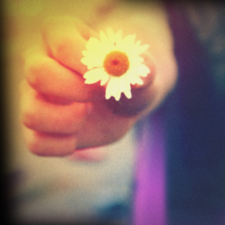 Holga Print 3 - Daisy by uselessdesires