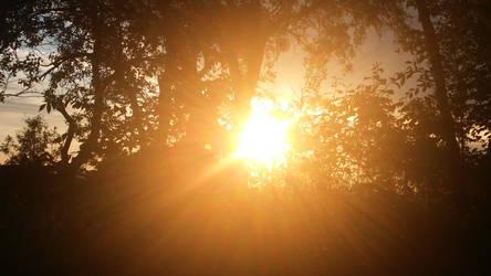 Sun by Annabella016