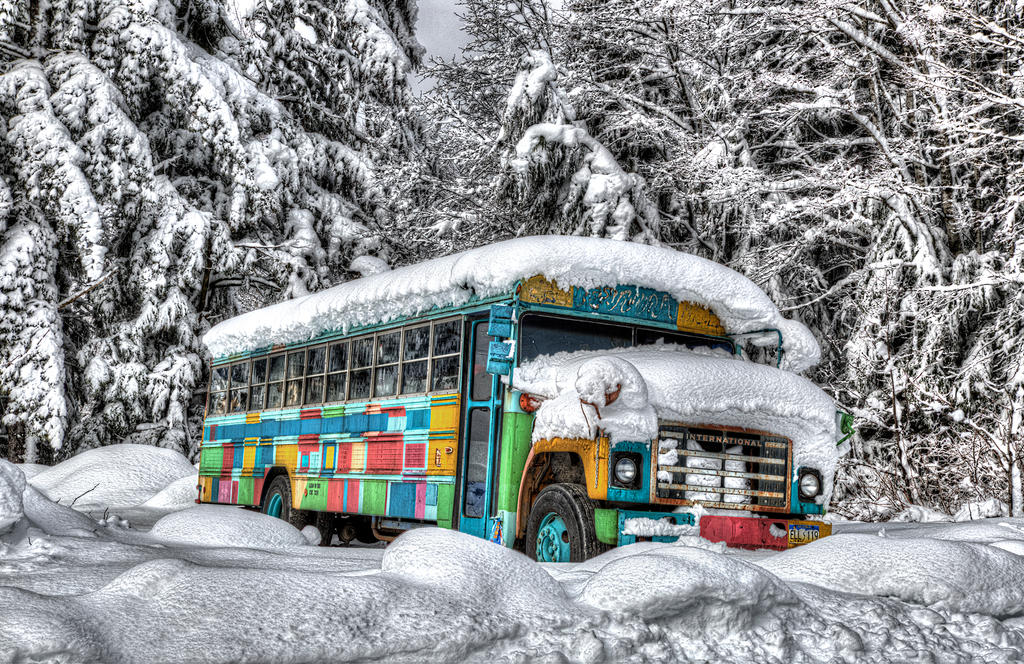 Magic Bus by Muskeg