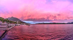 Pink Panorama