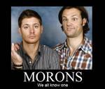 Supernatural Morons