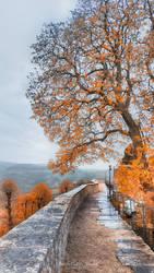 The orange way by MercedesCS
