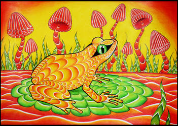 Frog And Shrooms by Dana-Ulama