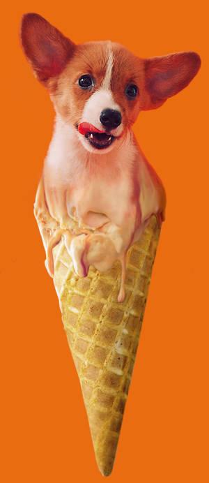 Corgi Cone Corgi Cream Dog Wall Art Print