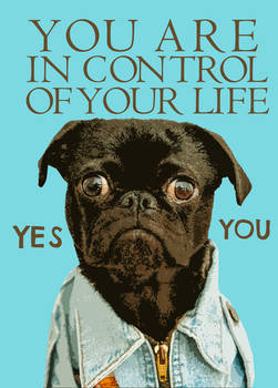 You Are In Control Of Your Life Funny Dog Quotes