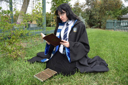 Ravenclaw Robe for sale