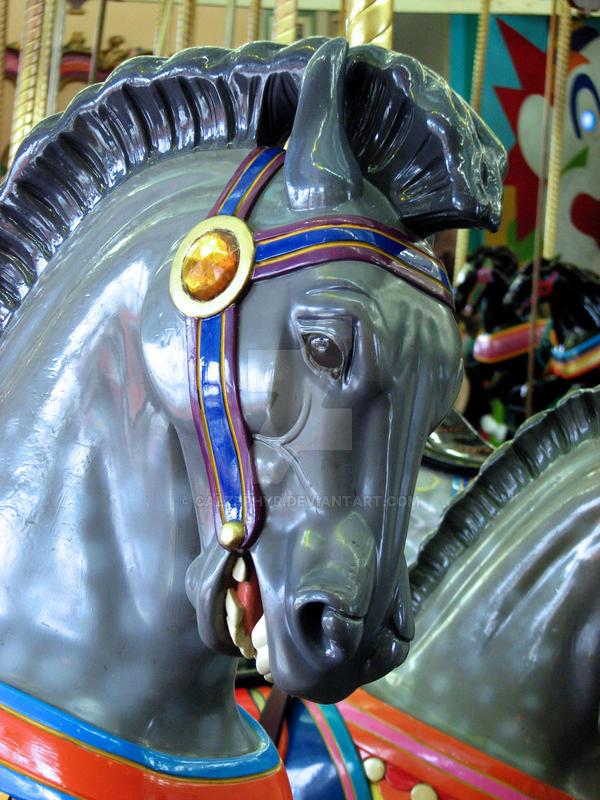 Santa Cruz Carousel by calzephyr