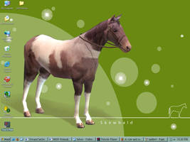 My new and improved desktop by calzephyr