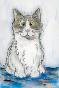 Gizmo the Cat Pet Portrait