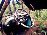 Adirondack Decay III by Seriridescence